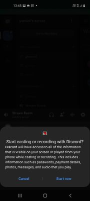 how to screen share on discord (8)